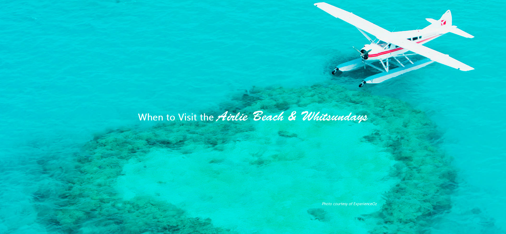 when to visit airlie beach whitsundays